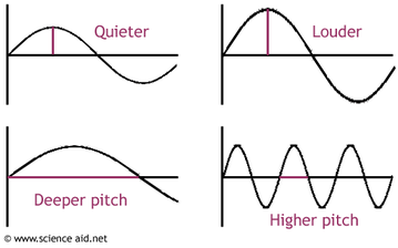 frequency and &litude force physics : amplitude diagram - findchart.co